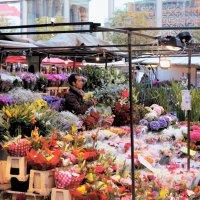 Зайдите на цветы взглянуть... :: Gennady Legostaev