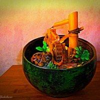 Черепаха и комнатный колодец :: Nina Yudicheva