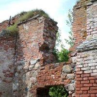 Развалины кирхи (калининградская область) :: Elena N