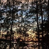 Графика заката :: Ольга
