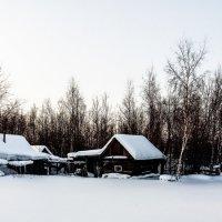не топтаный снежок :: Олеся Вахитова