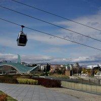 Тбилиси :: Виолетта