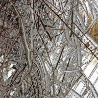 После ледяного дождя :: Игорь Александрович Оренбург