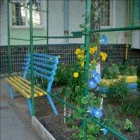 Кусочек нашего двора :: Нина Корешкова