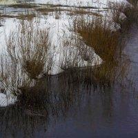 Ещё снега живые... :: Юрий