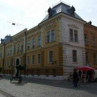 Областной  краеведческий  музей  в  Черновцах :: Андрей  Васильевич Коляскин