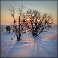 Утро, 26 марта.. :: Алексей Макшаков
