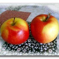 Крымские яблочки. :: Чария Зоя