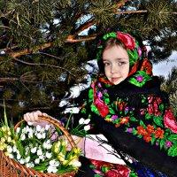 Весна уже близко :: Юлия Шишаева