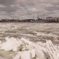 Последние льдины на Неве. :: Наталья Иванова