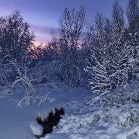 Мурманск. Фадеев ручей в ноябре. :: kolin marsh