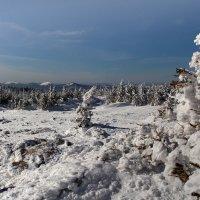 Весенний пейзаж :: Kogint Анатолий