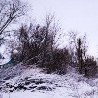 Снежный март :: Владимир Болдырев