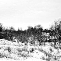 Снежный иарт :: Владимир Болдырев