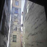 """""""А из нашего окна..."""" :: galina bronnikova"""
