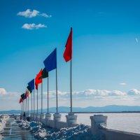 флаги :: Павел Руднев