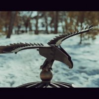 птица :: Павел Руднев
