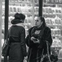 Дама с собачкой :: Михаил Вандич