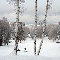 Мой город на Ангаре... :: Александр Попов
