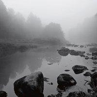 камни в холодной воде :: Виталий Исаев