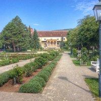 Розарий или парк в Бадене, Австрия :: Николай Милоградский