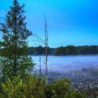 Синий туман :: Денис Тихонов