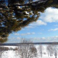 Как в Сорренто, есть сосны и небо, только снегом богаче наш край :: Николай Туркин