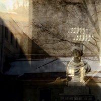 в стекле :: sv.kaschuk