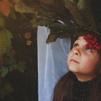 Осень :: Анна Сухомлин
