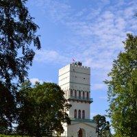 Взятие Белой башни :: Ольга