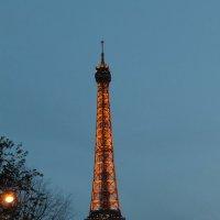 Paris. :: Дарья Громова