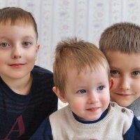 внуки... :: Олег Петрушов