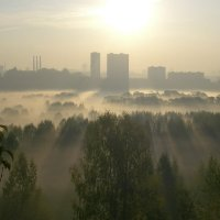 туман над р. Сходней :: Владимир Иванов