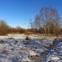 С зимой покончили мы счеты :: Андрей Лукьянов