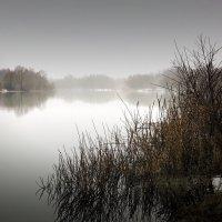 У реки. (Вдох весны!) :: Laborant Григоров