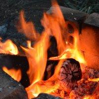 Огонь :: Евгения Курицына