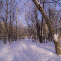 Мороз и солнце :: Наталья Лакомова