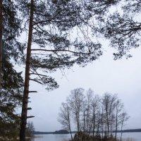 куда уплывают весной острова? :: liudmila drake
