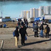 Мигранты :: Александр Скибицкий