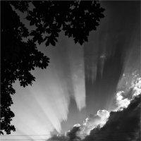 Небо над городом. :: Беспечный Ездок
