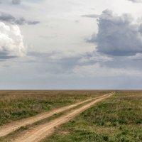 Русское поле :: Надежда
