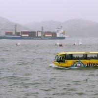 Лиссабонский автобус, мечтающий о море. :: Николай Карандашев