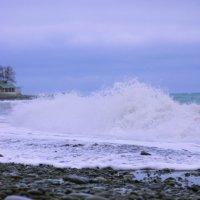 море :: юлия макухина