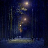 ночь в парке :: alexzonder