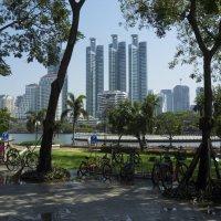 Таиланд. Бангкок. Вид из парка королевы :: Владимир Шибинский