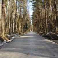 Зима отступает :: missis.litsis Елена