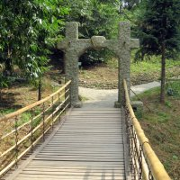 Качающийся мостик :: Вера Щукина