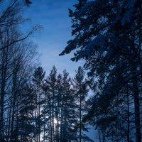 Зимний вечер. :: Владимир Батурин