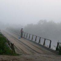 Утро на реке :: Алексей Ник