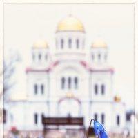 Весна :: Сергей
